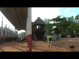 Микро-сталк Нифедова в Шри Ланке #8